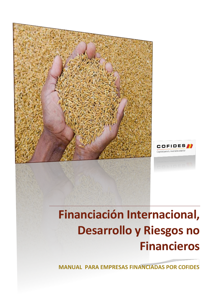 Portada del Documento 'Financiación Internacional, Desarrollo y Riesgos no Financieros - Manual para empresas financiadas por COFIDES'