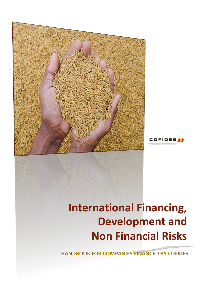 Cover page of 'International Financing, Development and Non Financial Risks - Handbook for companies financed by COFIDES'